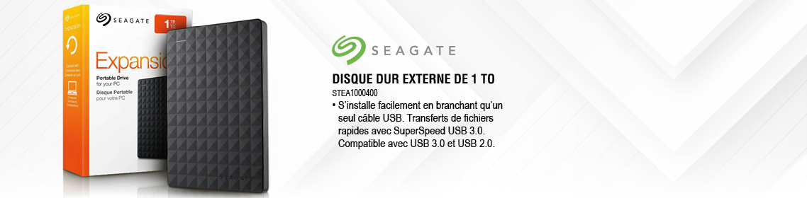 Pega Informatique - STEA1000400